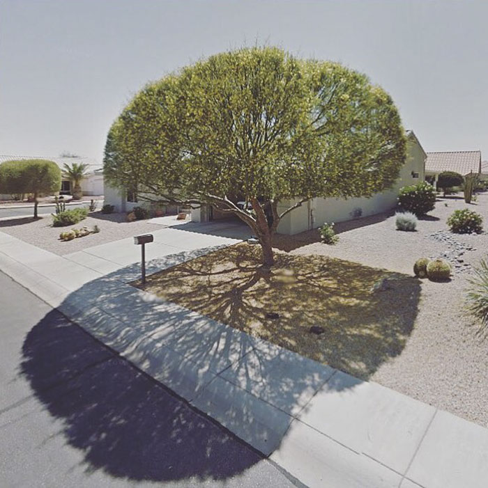 agoraphobic-traveller-google-street-view-photography-agoraphobia-.jpg